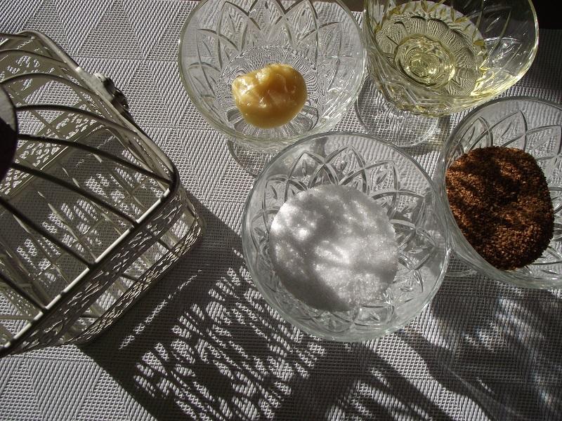 Sirop d'Agave, Sucre de fleur de coco, miel, xylitol Mes alternatives au sucre de canne