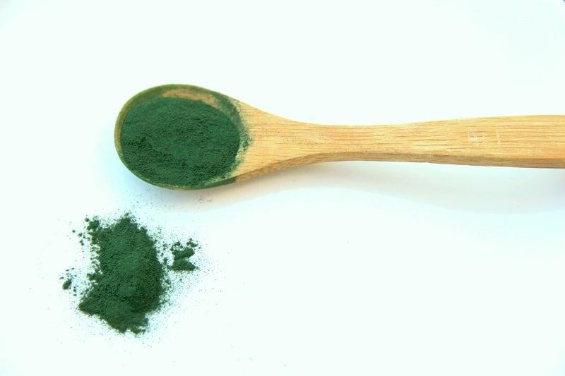 Algues Spiruline